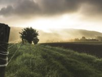 Arbeits- und Produktionserleichterung in der Landwirtschaft