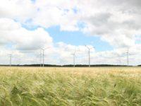 MABEWO AG – Agrarumweltprogramme und Investitionsprogramme mutig nutzen