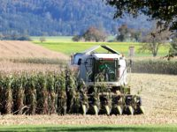 Europa: Die Veränderungen innerhalb der Agrarwirtschaft